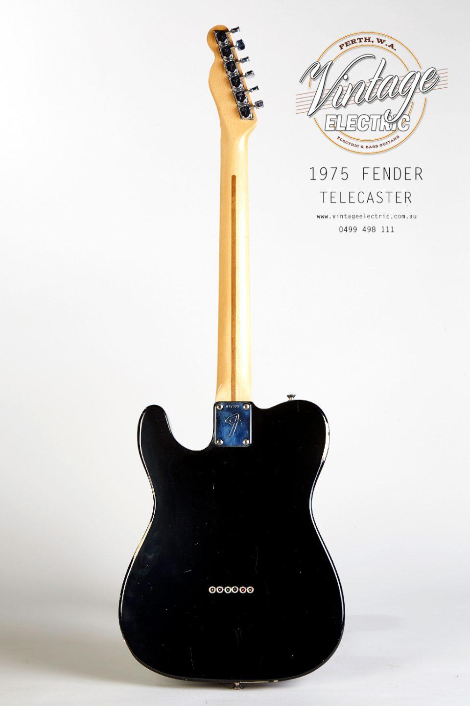 1975 Fender Telecaster Back of Guitar