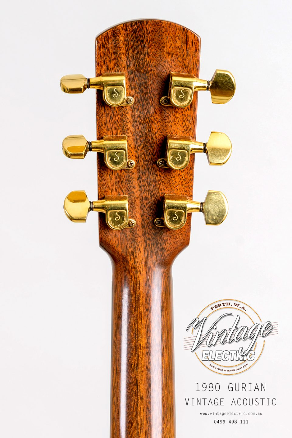1980 Gurian Acoustic Back of Headstock