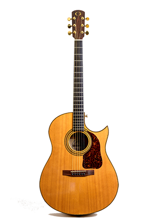 1980 Gurian Acoustic Guitar